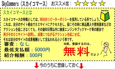 スカイコマース.jpg